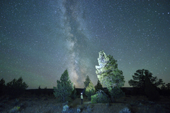 Booking (trips, etc.): Night Sky Photography Workshop