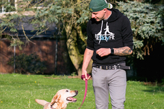 Free: How to walk your dog with ease- tips & tools
