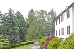 Varies/Learn More: Retreats and Renewal at Ananda Center Laurelwood