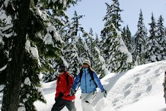 Booking (trips, stays, etc.): Snowshoe in the Cascades