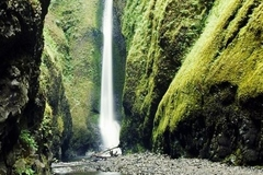Free: Oneonta Gorge and Lower Falls Hike