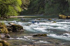 Varies/Learn More: North Umpqua River Adventures