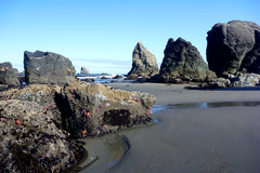 Free: Floras Lake State Park on the Oregon Coast