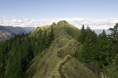 Free: Munra Point Trail: Columbia River Gorge