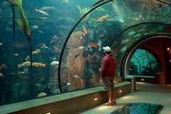 Booking (trips, stays, etc.):  Explore the Oregon Coast Aquarium