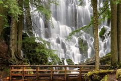 Varies/Learn More: Hike to Ramona Falls: Mt. Hood National Forest