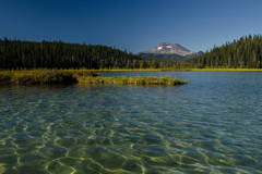 Booking (trips, stays, etc.): Explore Hosmer Lake: Deschutes National Forest