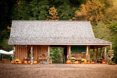 Varies: Mahaffy Ranch Pumpkin Patch