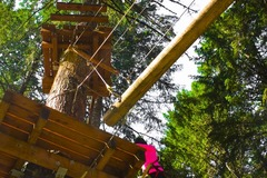 Booking (trips, stays, etc.): Aerial Obstacle Course - Tree To Tree Adventure Park