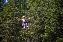 Booking (trips, etc.): Zip Line Tour - Tree To Tree Adventure Park!