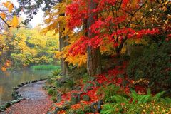 Free: Crystal Springs Rhododendron Garden