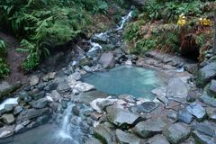 Varies/Learn More: Soak at Terwilliger Hot Springs: Willamette Nat'l Forest