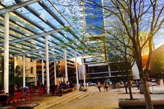 Free: Director Park in Portland