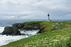 Varies/Learn More: Yaquina Head Outstanding Natural Area