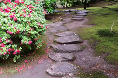 Varies/Learn More: Portland Japanese Garden
