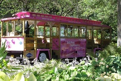Varies/Learn More: Big Pink Hop-On Hop-Off Trolley