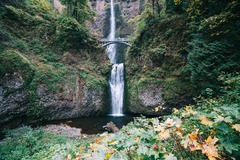 Booking (trips, stays, etc.): Multnomah Falls & Gorge Waterfalls  Tour 9AM
