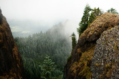 Free: Hike Saddle Mountain Near the Oregon Coast