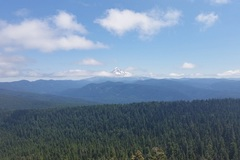 Free: Larch Mountain Crater Hike