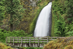 Varies/Learn More: Hike the Wahclella Falls Loop