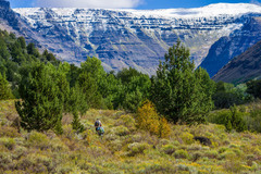 Free: Big Indian Gorge Trail -- Steens Mountain Wilderness