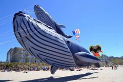 Free: 2019 Fall Kite Festival in Lincoln City
