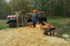 Donation: Harvest Train