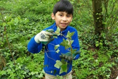 Free: No Ivy Day Cleanup at Nadaka Nature Park!