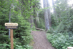Varies/Learn More: Memaloose Lake Trail through Old Growth Forest