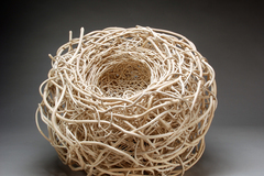Free: The Nature of Things: Oregon Artists Explore the Tree in Art