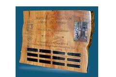 Free: Nominations sought for the 2017 Maynard C. Drawson Award