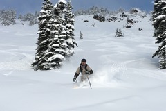 Booking (trips, stays, etc.): Portland to Mt. Hood Ski Shuttle