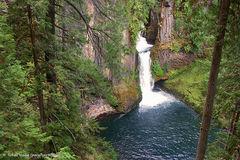 Free: Toketee Falls