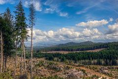 Free: Cedar Butte Hike