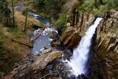 Free: Drift Creek Falls Near Lincoln City--Oregon Coast Range