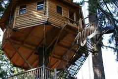 Booking (trips, stays, etc.): Out'n'About Treehouse Treesort