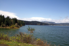 Varies: Henry Hagg Lake  / Scoogins Valley Park