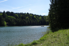 Varies/Learn More: Henry Hagg Lake  / Scoogins Valley Park
