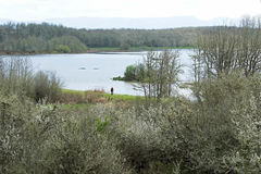 Free: Finley National Wildlife Refuge in the Willamette Valley