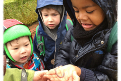 Booking (trips, etc.): Family Nature Class: Soil and Majestic Redwoods