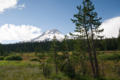 Varies/Learn More: Hike Mt. Hood's Elk Meadows