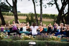 Booking (trips, etc.): 3rd Annual Vinyasa in the Vineyards