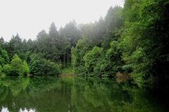 Free: Explore Peavy Arboretum in Corvallis