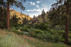 Free: Rock Creek Trail - Ochoco Mountain Range