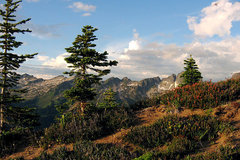 Varies/Learn More: Hike the Buck Creek Trail - Hells Canyon Wilderness