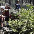Booking (trips, etc.): Kids Camp School's Out! at the High Desert Museum