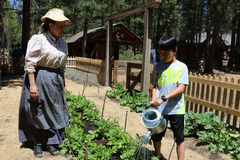 Free: Harvest Festival at the High Desert Museum
