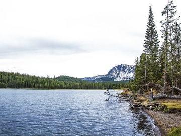 Varies/Learn More: Paulina Lake  Shoreline Trail