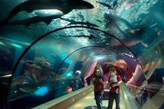 Varies/Learn More: Oregon Coast Aquarium in Newport