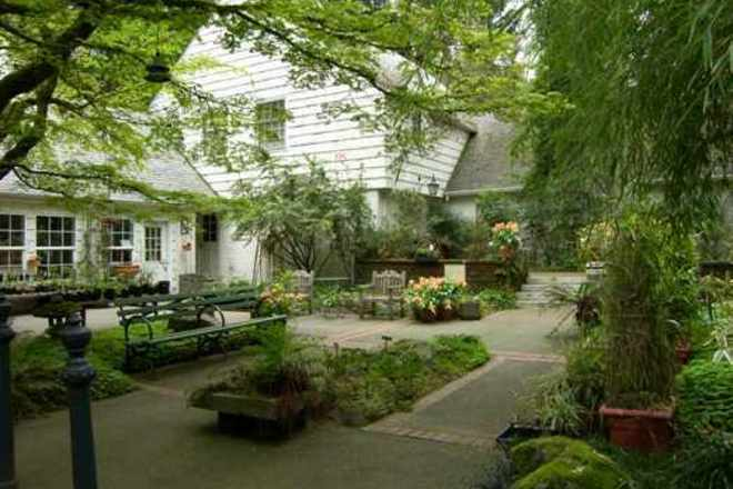 Leach Botanical Garden A Place Like No Other